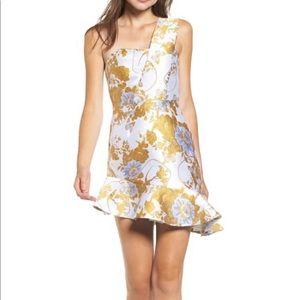 The Golden dress